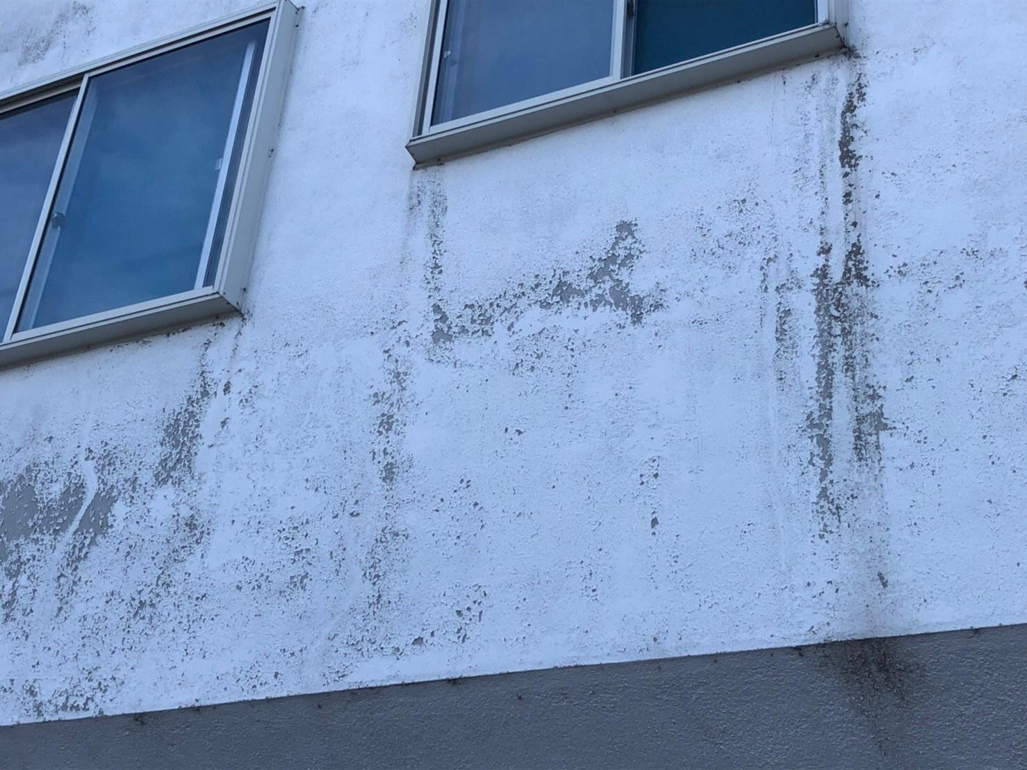 外壁汚れ・剥がれ